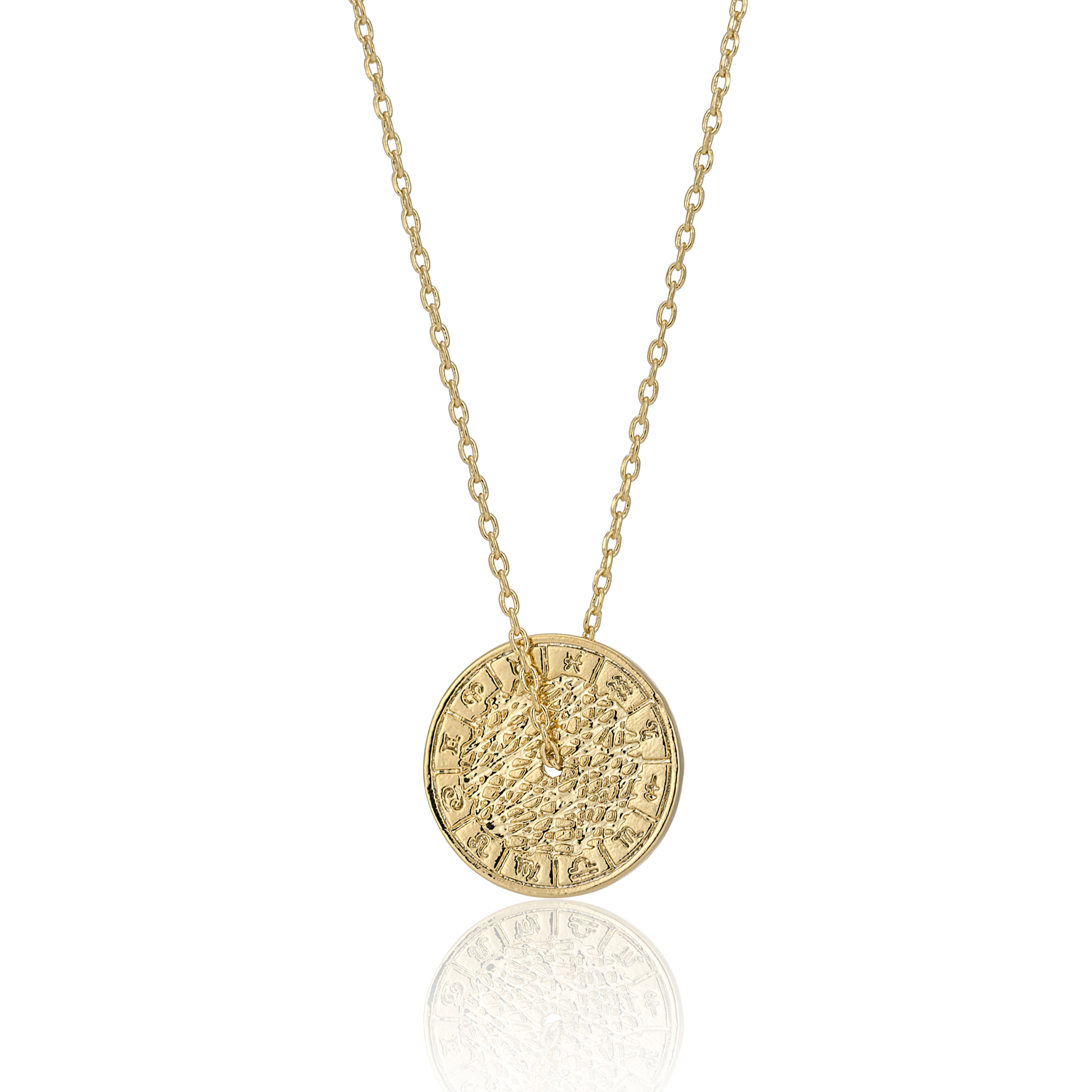 GOLD Enchanted Treasure Coin Necklace
